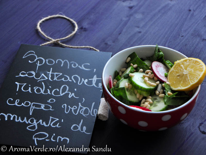 Salata spanac, castraveti, ridichi, ceapa verde, muguri pin
