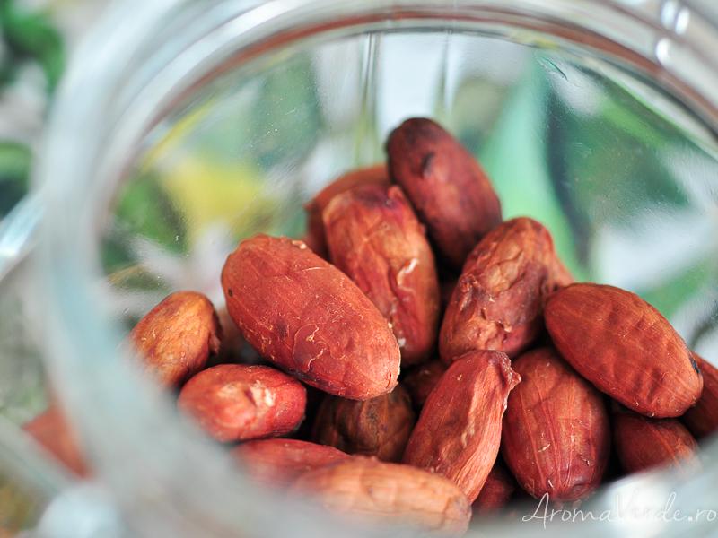 Boabe de cacao crude BeezArt