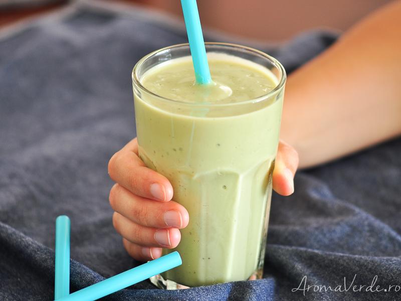 Milkshake cu vanilie