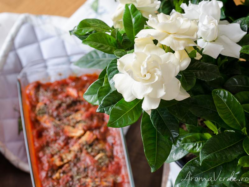 Lasagna vegană gardenia