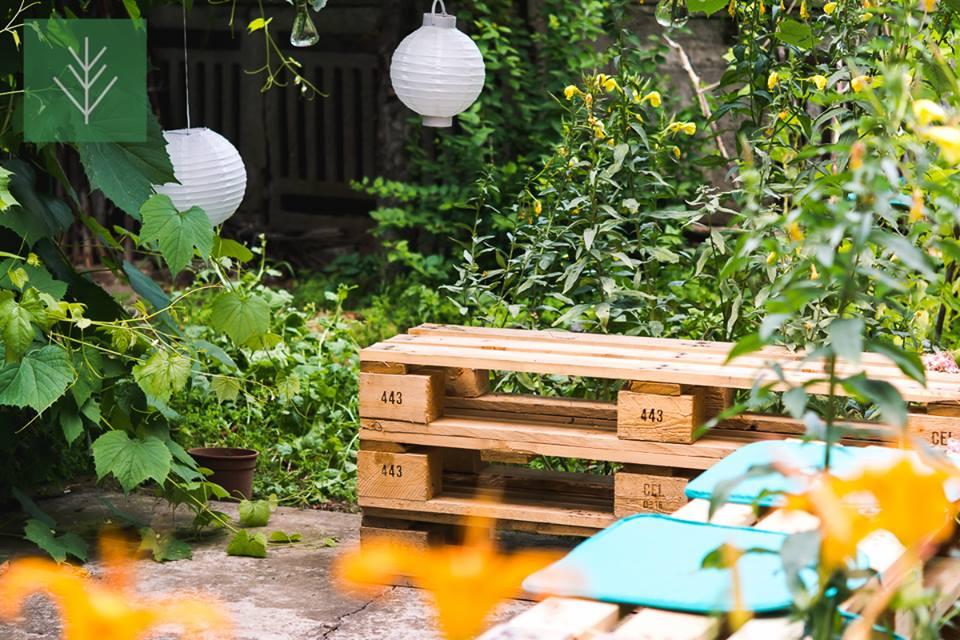 Grădină Veg Studio