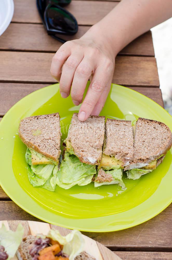 Sandwich tofu Sara Green-2