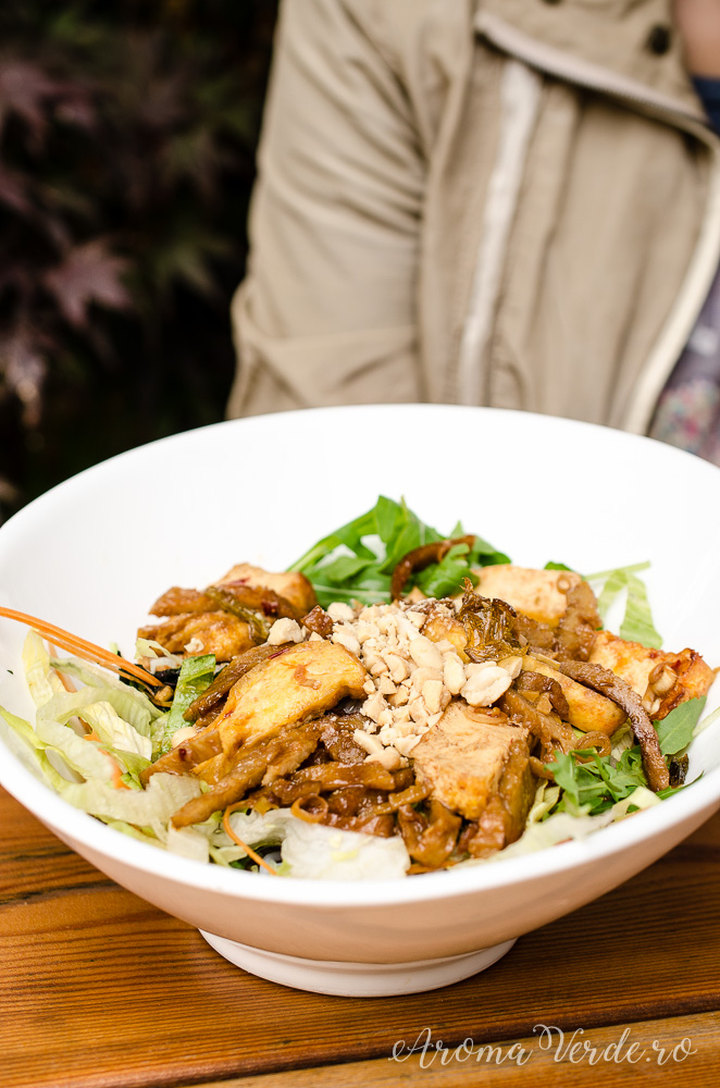 Noodles cu stir fry tofu și seitan
