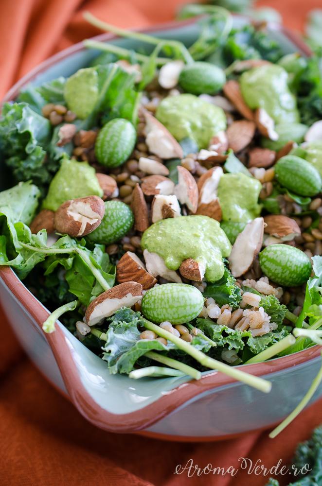 Salată proteică cucamelon